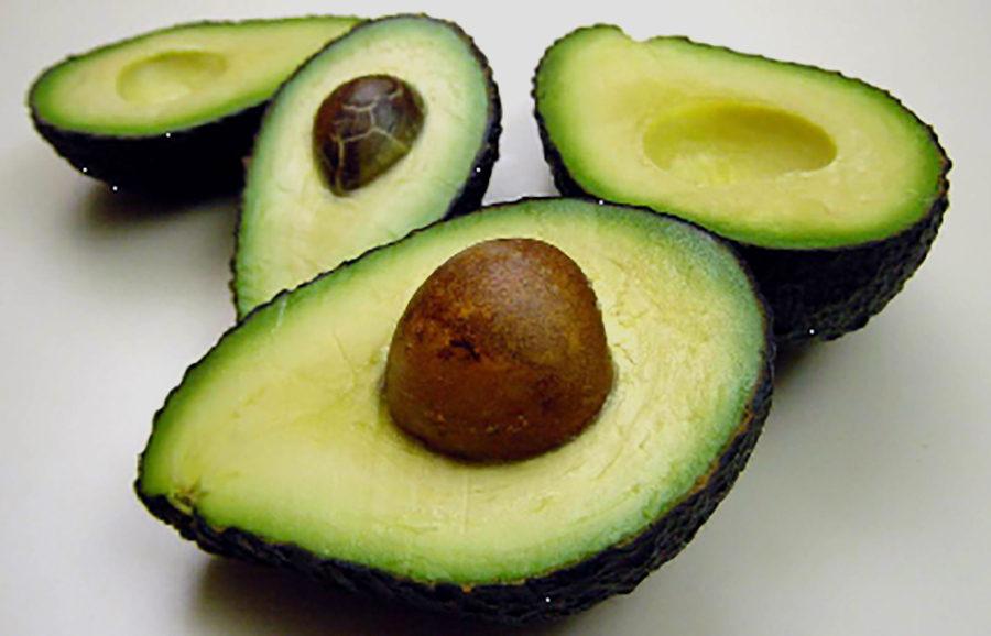 Maluma-Hass-avocado-fruit-tree-variety-anfic